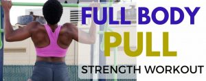 Full Body Pull - Workout 1